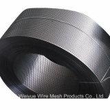 Lamina di metallo perforata dell'acciaio inossidabile di alta qualità per (soffitto/filtrazione/setaccio/decorazione/isolamento acustico)