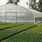 Filme com uma única camada de gases com efeito de plantação de produtos hortícolas