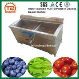Machine van de Wasmachine van de Sterilisatie van de Vruchten van het Ozon van de Sterilisator van het voedsel de Plantaardige Schoonmakende