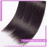 Extensão de cabelo de fábrica Remy Virgem Cabelo humano Brasileiro