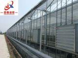 Serre chaude en verre intelligente pour la plantation verticale