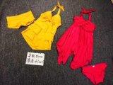 Badebekleidung, reizvoll für Badeanzug, Schwimmen-Klage, Form-Dame-Badeanzug, 25000sets.