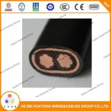 2X6/6mm Concentrische Cable/XLPE Geïsoleerdeg Concentrica Cable/PE isoleerden Concentrische Kabel