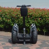 Schwanzloser 4000W 72V 1266wh 2 Rad-Ausgleich-intelligenter Roller