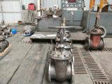 Cuña de Manual de estructura flexible de válvula de compuerta de acero inoxidable
