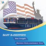 La logistique de la Chine aux nations membres de l'Amérique par fret maritime