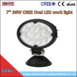 Indicatore luminoso ovale caldo del lavoro del CREE LED di vendita 36W per il macchinario di Argicultural