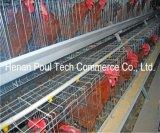 Cage de poulet d'éleveur de ferme avicole avec le système automatique de matériel (un bâti)