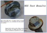 Appareil de contrôle matériel de corrosion de jet de sel d'IEC-60068-2-11durable