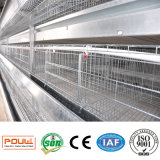 H Type de la couche de grande capacité de la cage de poulet