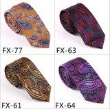 Cravate à la mode de Paisley de nouveauté de modèle neuf (Fx-77)