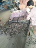 Het staal poetste Gemeenschappelijke Spijker voor Bouw op