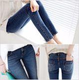 Джинсыы популярной стильной джинсовой ткани женщин тощие