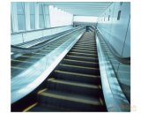 Escalator intérieur ou extérieur avec deux étapes en acier inoxydable Hairline