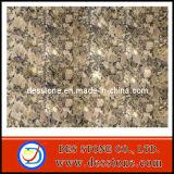 Losa de mosaico granito Giallo Fiortot nueva encimera de granito (DES-GT021)