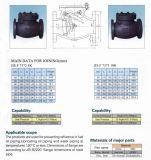 10K De Klep van de Controle van de Schommeling van het Gietijzer JIS F7373