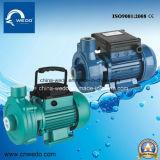 전기 말초 원심 수도 펌프 (dk 14/DK20)를 위한 Dk 0.37kw/0.55HP