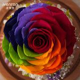 Natuurlijke Echte Bloem voor de Decoratie van het Huwelijk van de Gift