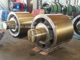 Rolos de sustentação para a estufa giratória e o secador giratório