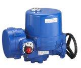 Электрический ПВХ шарового клапана (LQ)