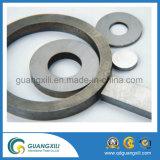 Magnete a ferro di cavallo del AlNiCo per uso d'istruzione