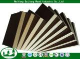 عالية الجودة الخشب الرقائقي التجاري / مصراع الخشب الرقائقي للبناء