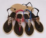 Pcu Sandals (24puc16-3)卸し売り女性