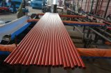 UL/FM ASTM A795 Sch40の赤い塗られた鋼管