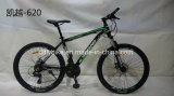 Low Price Alloy MTB Bike, Alloy Mountain Bicycle,