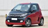 Автомобиль малого автомобиля электрический с 2 местами