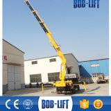 10 Tonnen-Knöchel-hydraulischer kleiner Schlussteil-Kran für LKW