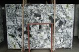 얼음 녹색 대리석 Slabs&Tiles 대리석 Flooring&Walling