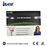 4,3-дюймовый ЖК монитор видеокарты для футбола