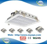 Yaye 18 최신 인기 상품 Meanwell /Osram SMD3030/옥외 100W LED 선형 빛 5 년 보장