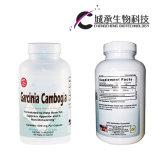 100% 자연적인 체중을 줄이는 환약 Garcinia Cambogia 체중 감소 캡슐 규정식 환약
