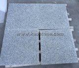A buon mercato/il granito grigio G602 qualità naturale per la parete/pavimento personalizza
