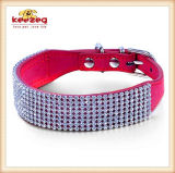 Chaussures de chien pour animaux de qualité / Colliers pour chiens (KC0059)