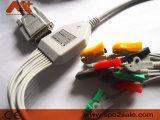 Cable de una sola pieza de Dongjiang 10-Lead EKG