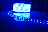 낮은 전압 지구 빛 60LED LED 테이프 빛