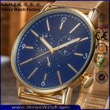 Orologio casuale delle signore su ordinazione della cinghia di cuoio di modo (WY-P17016B)