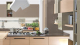 Moderne Naar maat gemaakte Keukenkasten blk-43 van de Lak