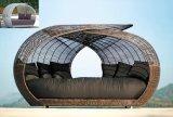 パリの藤の寝台兼用の長椅子のテラスの家具の庭の家具(TG-JW30)