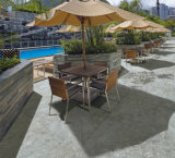 屋外のタイプ庭の床の20mmステップの厚さの磁器のタイル