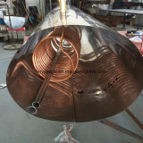 Calefator de água solar pré-aquecido com o cambista de cobre da bobina para dentro