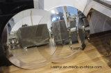 De elegante Spiegel van het Frame van het Roestvrij staal van de Decoratie van het Meubilair van de Woonkamer