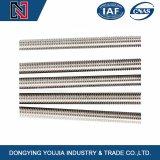DIN975 acciaio inossidabile Rod filettato con il livello di BACCANO, iso, JIS, ANSI