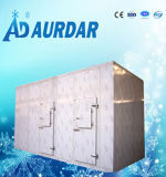 Cámara fría comercial y industrial/congelador de trabajo