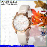 Orologio casuale delle signore del quarzo della cinghia di cuoio di modo (Wy-078E)