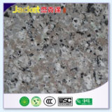De Nevel die van het Effect van het graniet de Hoge AcrylVerf van de Dekking met een laag bedekken