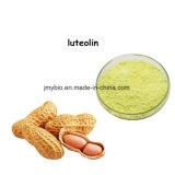 Erdnuss-Shell-Auszug-Puder-Luteolin 98%